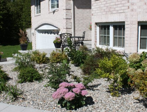 Landscaping Services Ottawa