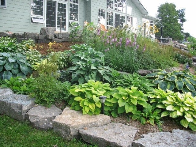 Rocky blooming garden in natural stones
