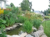 Natural stone for a lush garden and pond