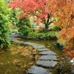 Natural Landscaping Concepts